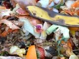 Cīņa par Rīgas atkritumiem sākusies
